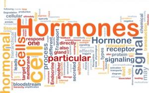 hormones_shutterstock_77777350