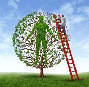 Life_tree_shutterstock_107059616 (1)